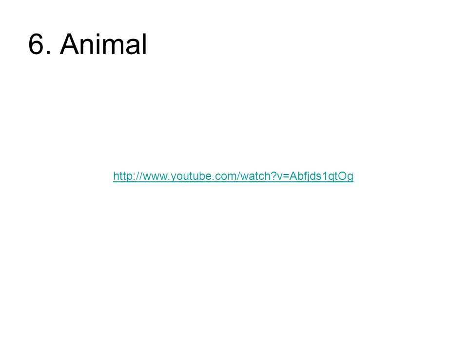 6. Animal http://www.youtube.com/watch v=Abfjds1qtOg