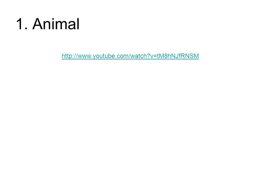 1. Animal http://www.youtube.com/watch v=tM8hNJfRNSM