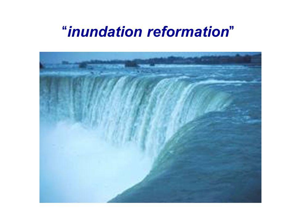 """inundation reformation"""