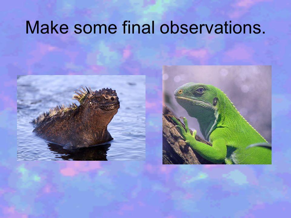 Make some final observations.