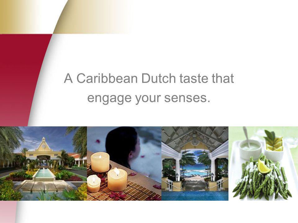 A Caribbean Dutch taste that engage your senses.