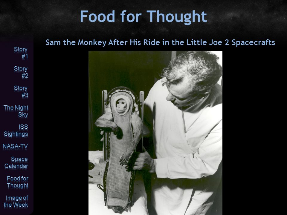 Food for Thought Sam the Monkey After His Ride in the Little Joe 2 Spacecrafts