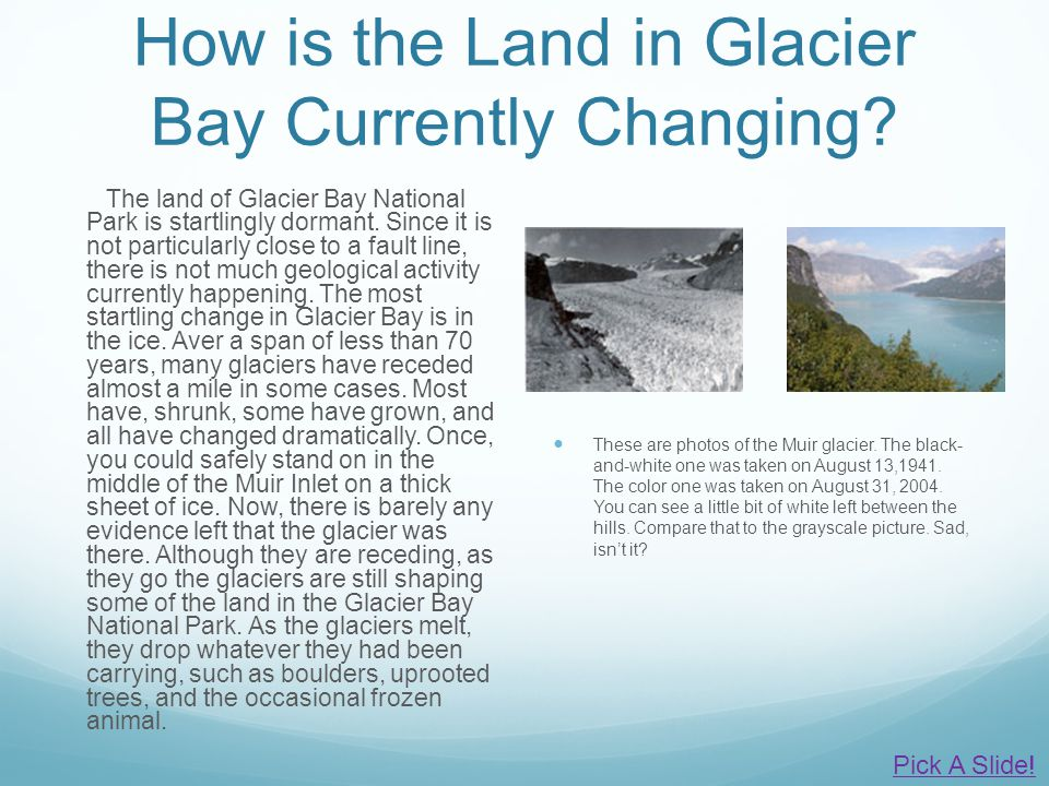 How is the Land in Glacier Bay Currently Changing? The land of Glacier Bay National Park is startlingly dormant. Since it is not particularly close to