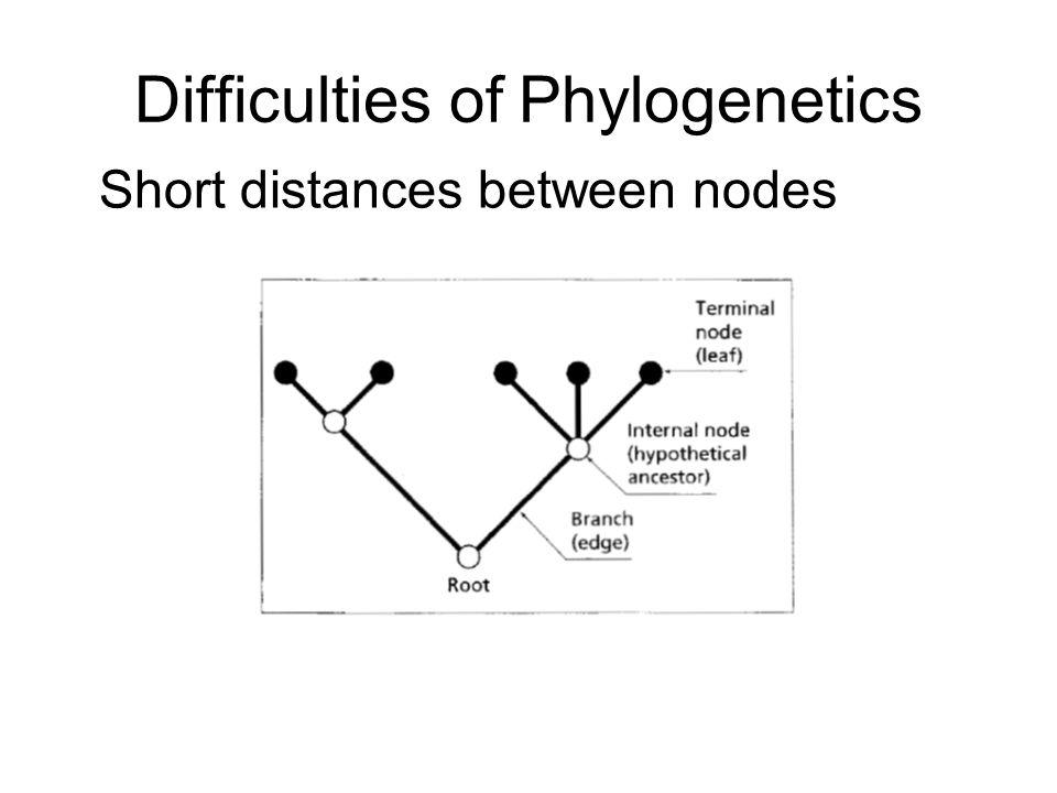 Difficulties of Phylogenetics Short distances between nodes