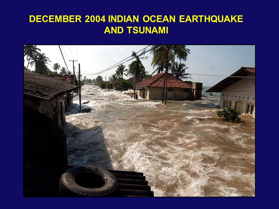 DECEMBER 2004 INDIAN OCEAN EARTHQUAKE AND TSUNAMI