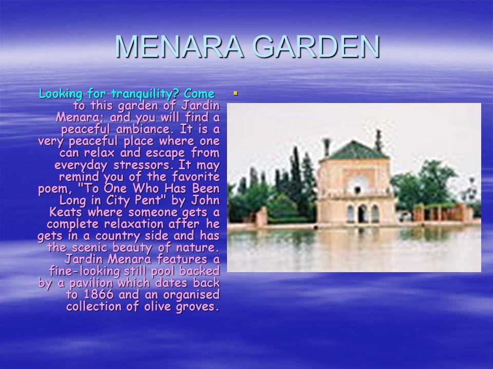 Majorelle Garden in Marrakech MMMMajorelle Garden, an oasis of calm and cool, fresh air in the heart of the city of Marrakech.