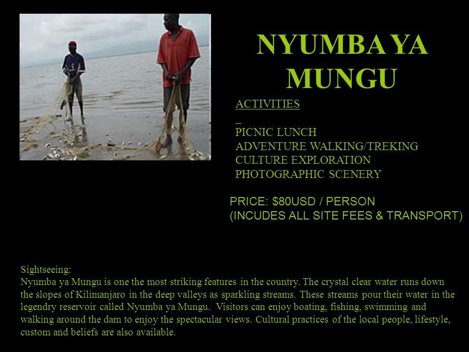 NYUMBA YA MUNGU ACTIVITIES PICNIC LUNCH ADVENTURE WALKING/TREKING CULTURE EXPLORATION PHOTOGRAPHIC SCENERY Sightseeing: Nyumba ya Mungu is one the most striking features in the country.