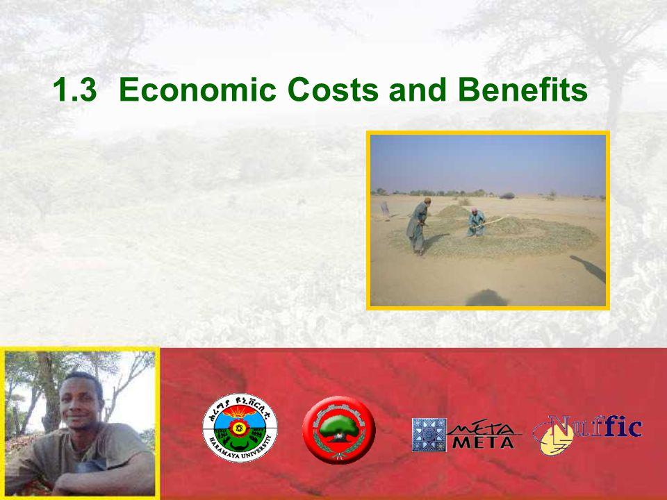 1.3Economic Costs and Benefits