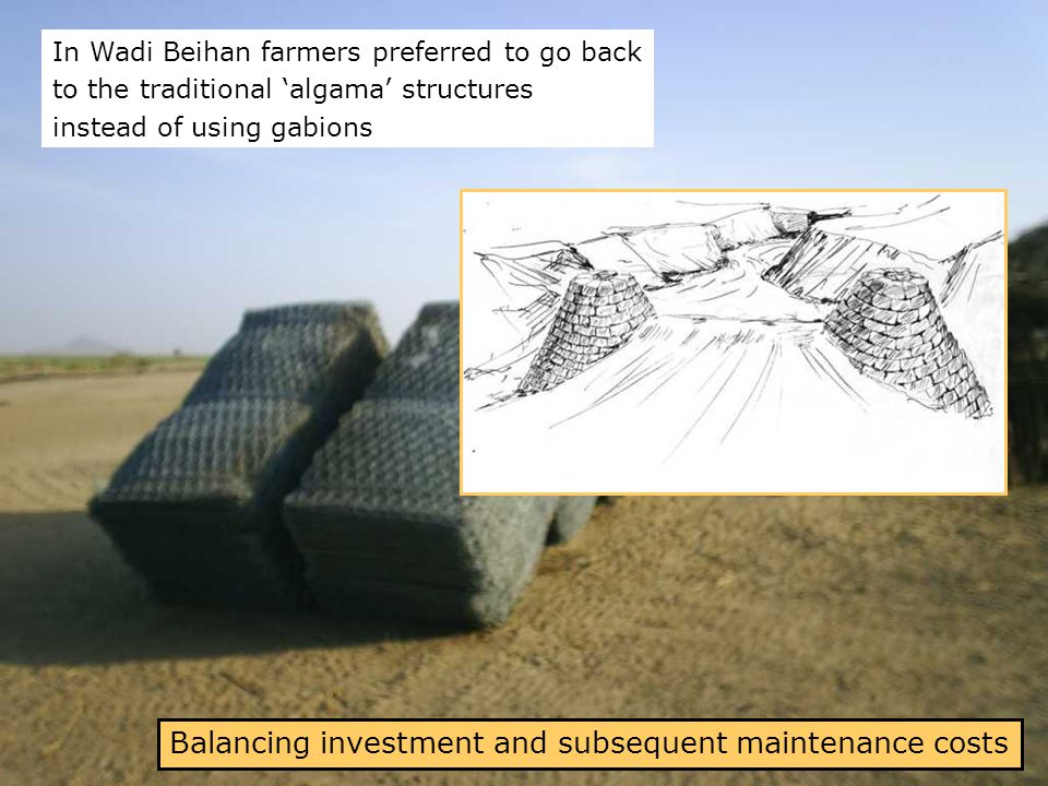 Balancing investment and subsequent maintenance costs In Wadi Beihan farmers preferred to go back to the traditional 'algama' structures instead of using gabions