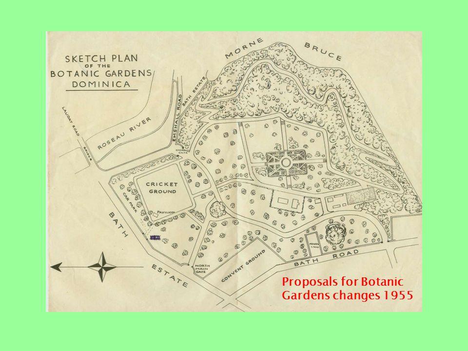 Botanic Gardens 1920