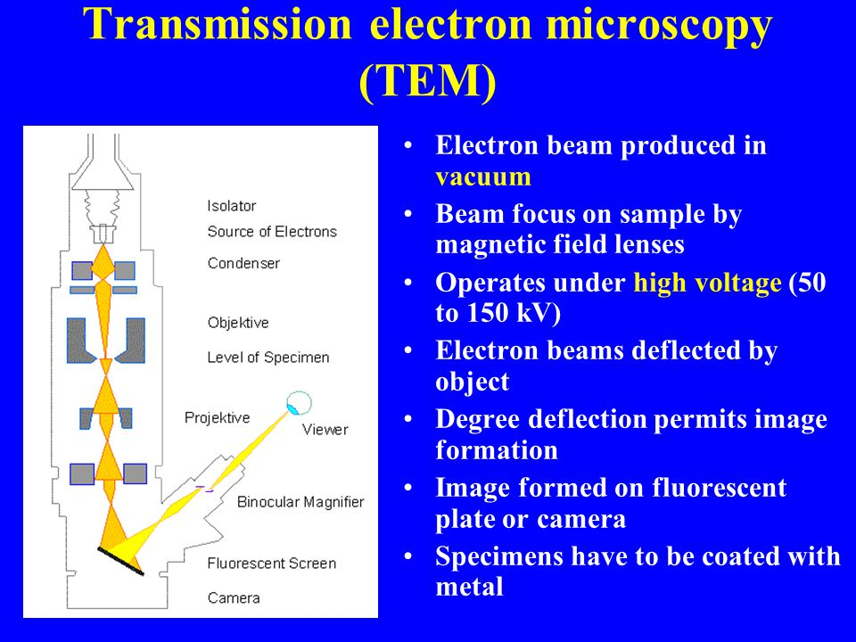 Transmission electron microscopy (TEM) Electron beam produced in vacuum Beam focus on sample by magnetic field lenses Operates under high voltage (50