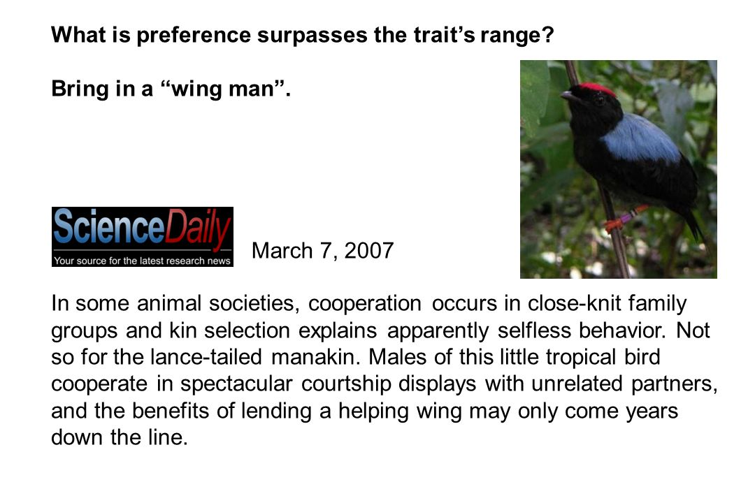 What is preference surpasses the trait's range. Bring in a wing man .