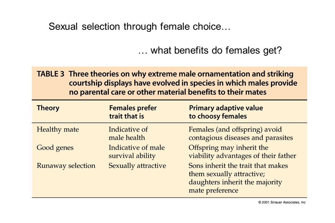 Sexual selection through female choice… … what benefits do females get?