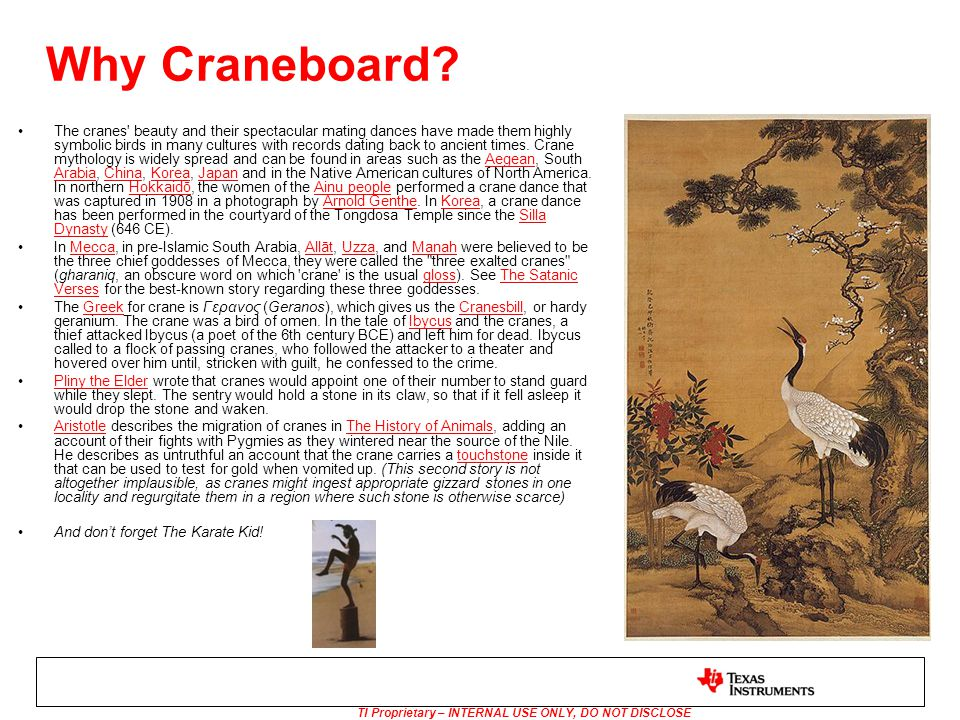 TI Proprietary – INTERNAL USE ONLY, DO NOT DISCLOSE Why Craneboard? The cranes' beauty and their spectacular mating dances have made them highly symbo