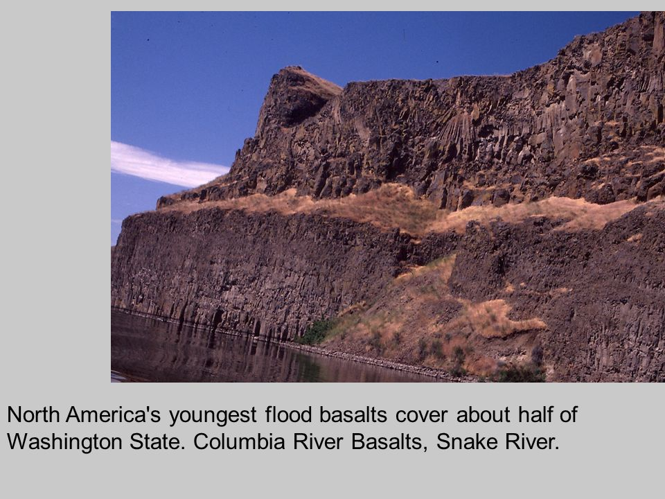 North America s youngest flood basalts cover about half of Washington State.