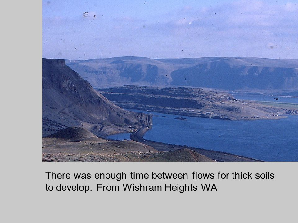 There was enough time between flows for thick soils to develop. From Wishram Heights WA