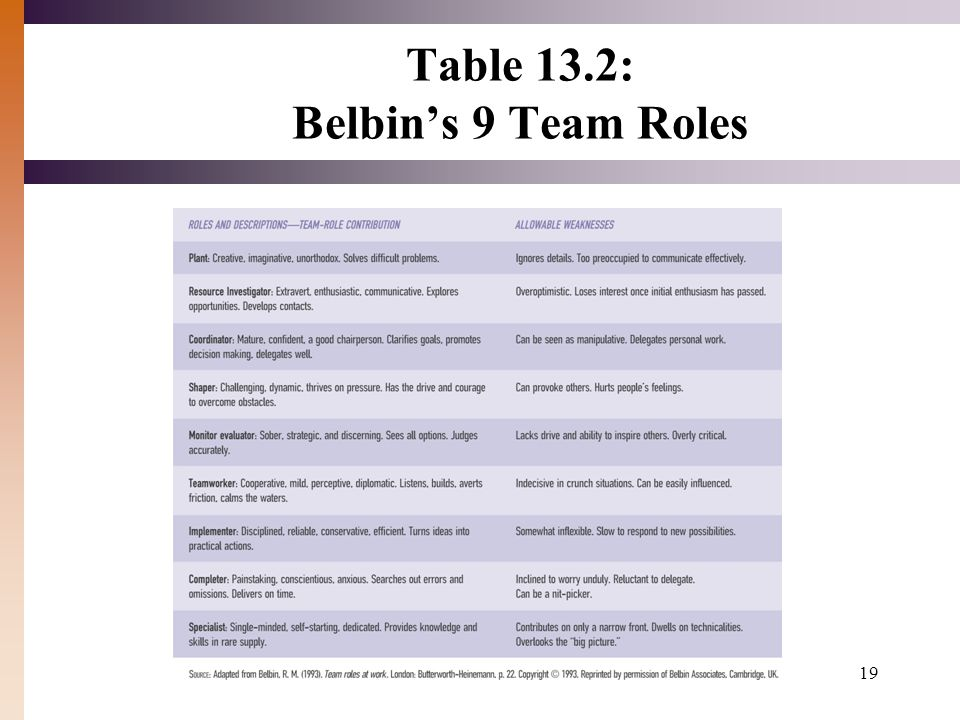 Table 13.2: Belbin's 9 Team Roles 19
