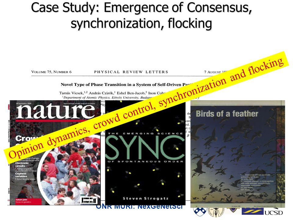 ONR MURI: NexGeNetSci Case Study: Emergence of Consensus, synchronization, flocking Opinion dynamics, crowd control, synchronization and flocking