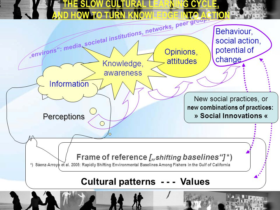 "Cultural patterns - - - Values Frame of reference ["" shifting baselines""] *) Perceptions Information Opinions, attitudes *) Sáenz-Arroyo et al. 2005:"