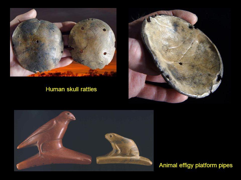 Human skull rattles Animal effigy platform pipes