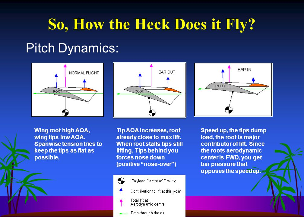 Pitch Dynamics: So, How the Heck Does it Fly.Wing root high AOA, wing tips low AOA.