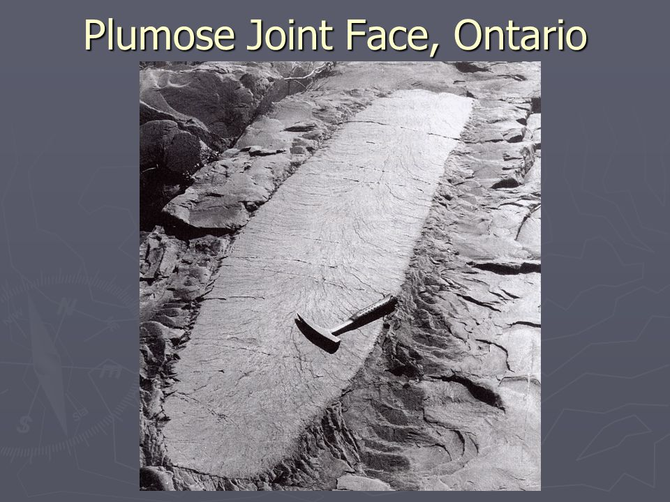 Plumose Joint Face, Ontario