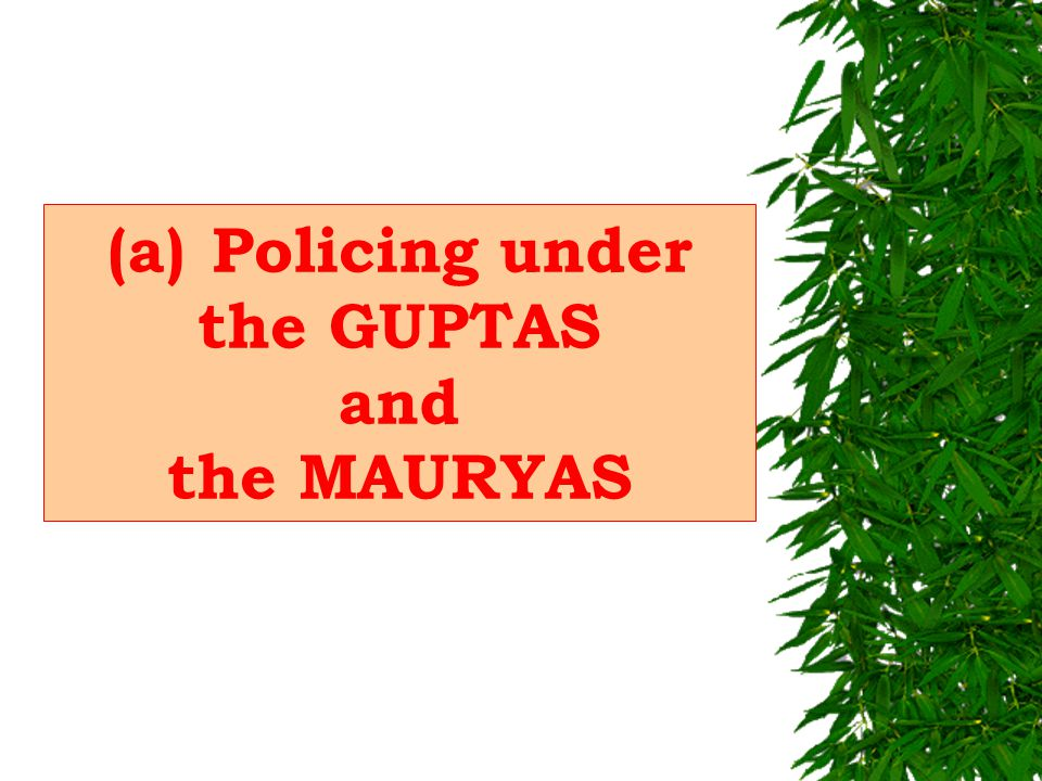 8. COMMUNITY POLICING TRADITIONS AND EXPERIMENTS IN INDIA