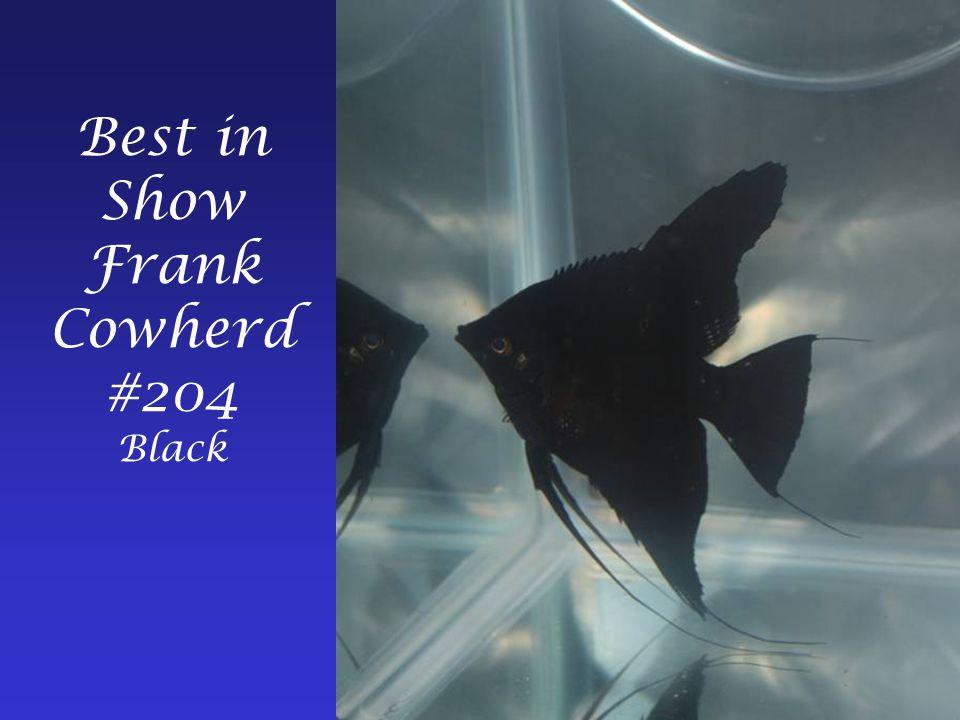 Best in Show Frank Cowherd #204 Black