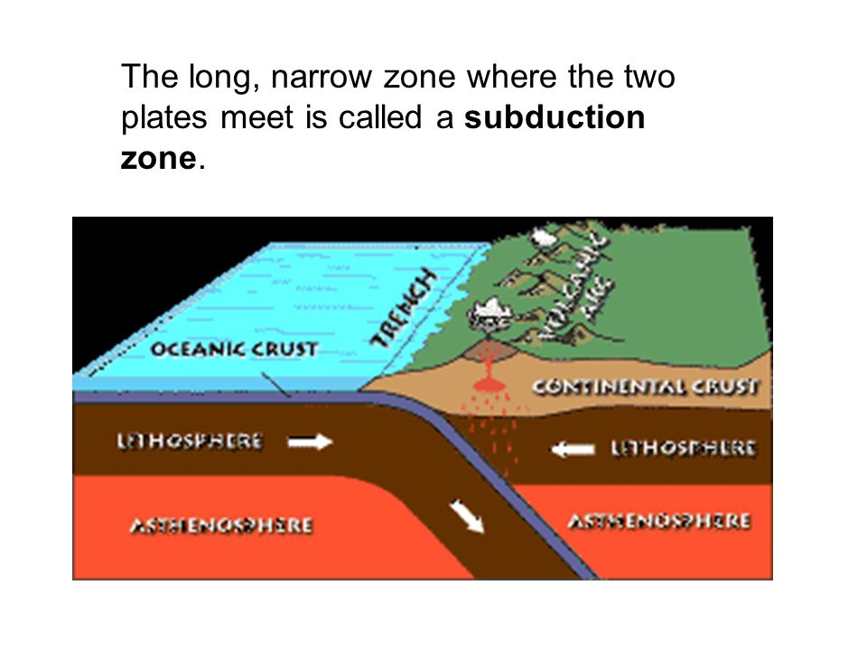 The long, narrow zone where the two plates meet is called a subduction zone.