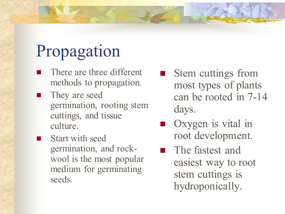 Propagation There are three different methods to propagation.