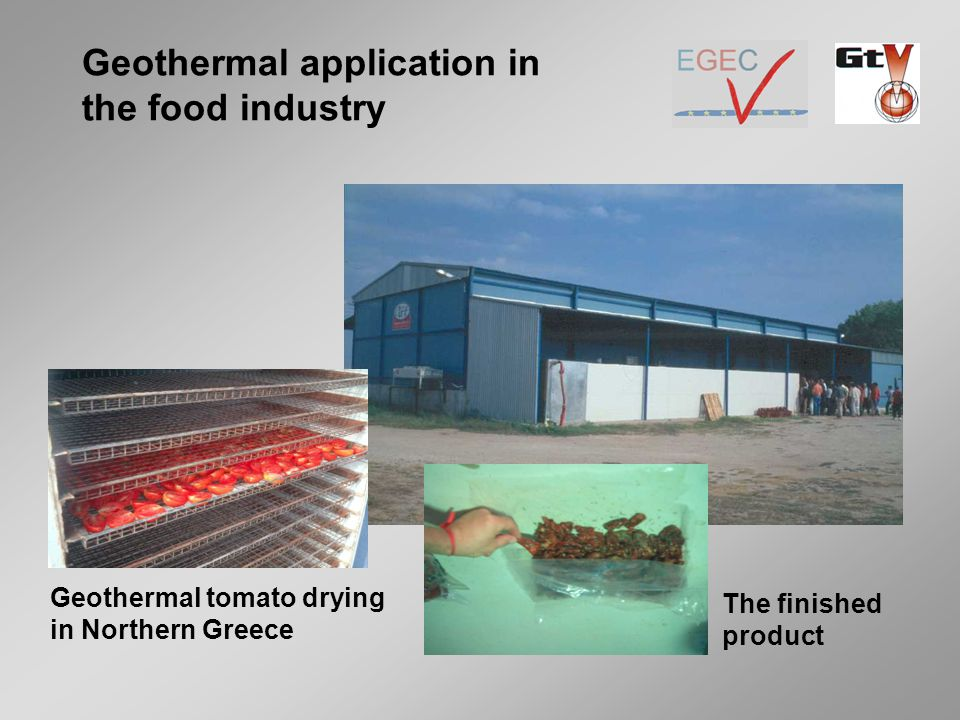 Geothermal tomato drying in Northern Greece The finished product Geothermal application in the food industry