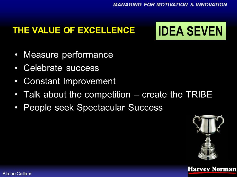 MANAGING FOR MOTIVATION & INNOVATION Blaine Callard THE VALUE OF EXCELLENCE Measure performance Celebrate success Constant Improvement Talk about the competition – create the TRIBE People seek Spectacular Success IDEA SEVEN