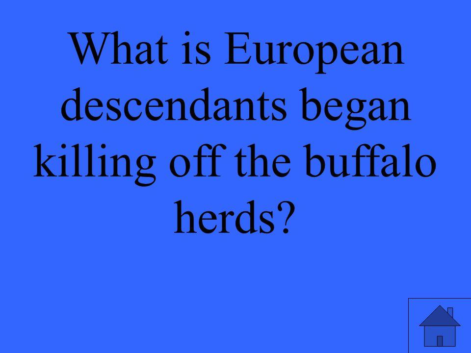 What is European descendants began killing off the buffalo herds?