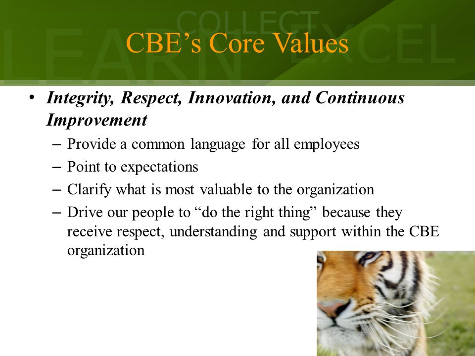 LEARN COLLECT EXCEL CBE's Core Values Integrity, Respect, Innovation, and Continuous Improvement – Provide a common language for all employees – Point to expectations – Clarify what is most valuable to the organization – Drive our people to do the right thing because they receive respect, understanding and support within the CBE organization