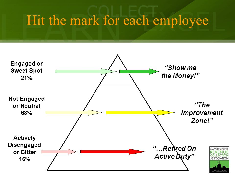 LEARN COLLECT EXCEL Actively Disengaged or Bitter 16% Not Engaged or Neutral 63% Engaged or Sweet Spot 21% Hit the mark for each employee …Retired On Active Duty Show me the Money! The Improvement Zone!