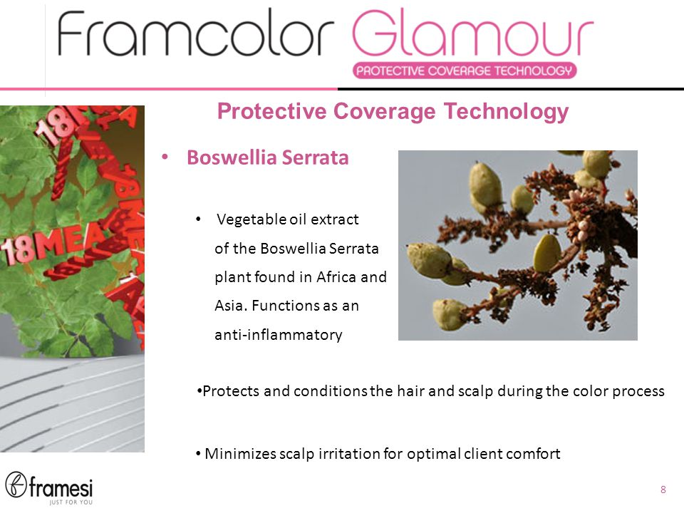 8 Protective Coverage Technology Boswellia Serrata Vegetable oil extract of the Boswellia Serrata plant found in Africa and Asia.