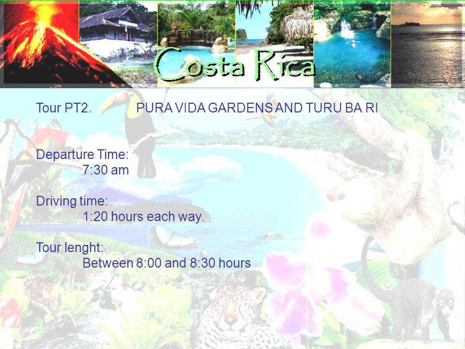 Tour PT2. PURA VIDA GARDENS AND TURU BA RI Departure Time: 7:30 am Driving time: 1:20 hours each way. Tour lenght: Between 8:00 and 8:30 hours