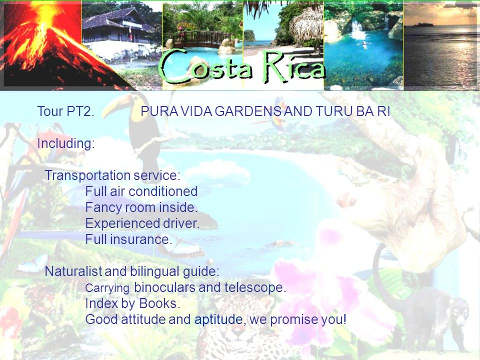 Tour PT2. PURA VIDA GARDENS AND TURU BA RI Including: Transportation service: Full air conditioned Fancy room inside. Experienced driver. Full insuran