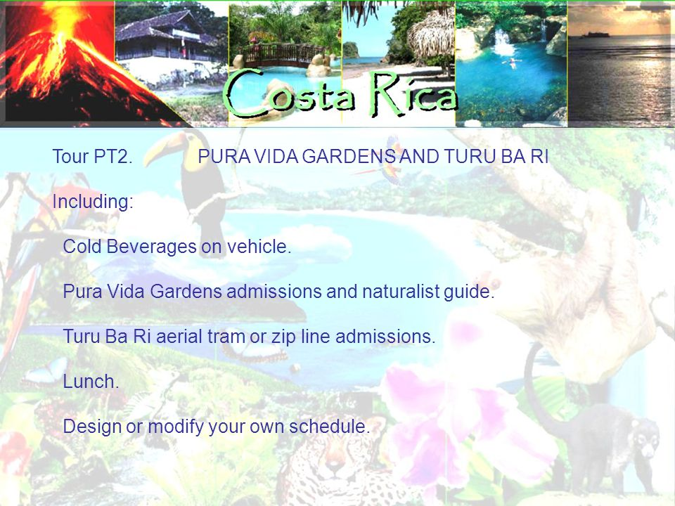 Tour PT2. PURA VIDA GARDENS AND TURU BA RI Including: Cold Beverages on vehicle. Pura Vida Gardens admissions and naturalist guide. Turu Ba Ri aerial