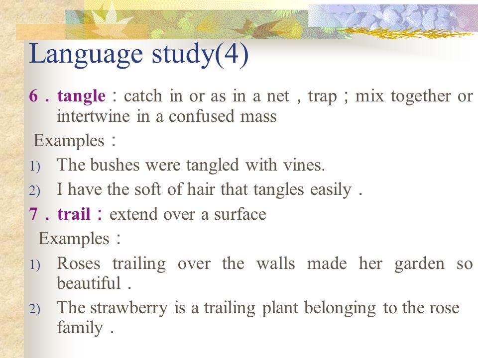 Language study(3) 5.