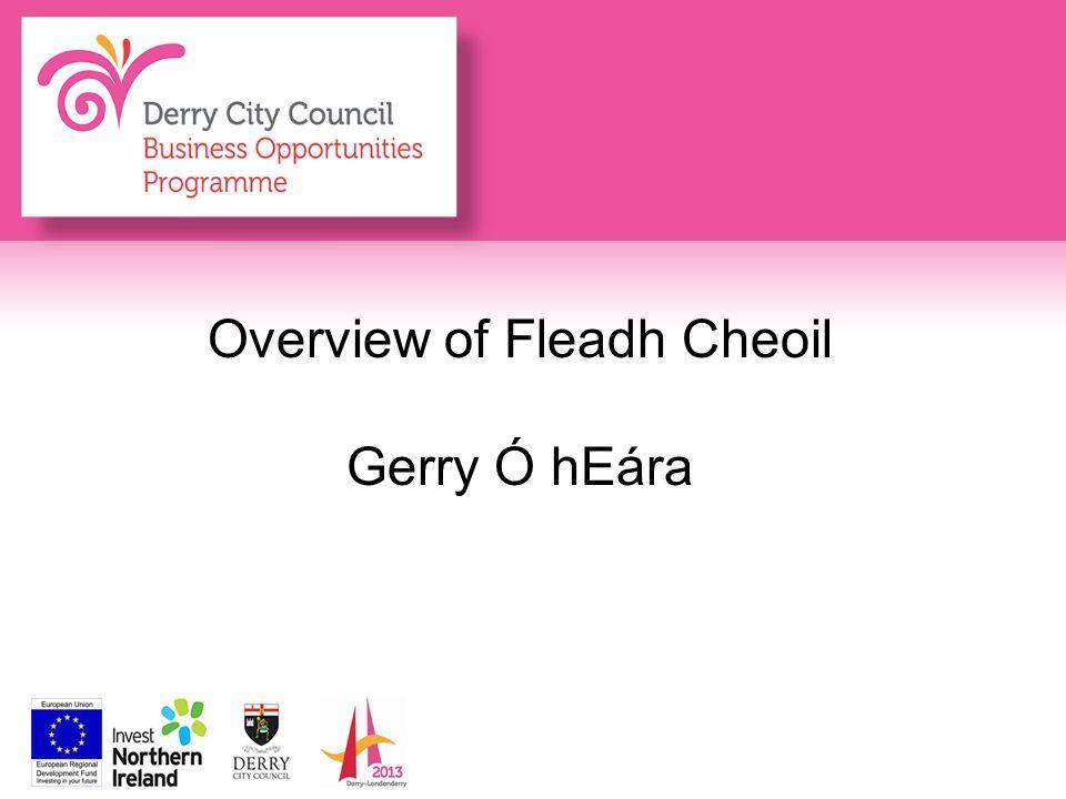 Overview of Fleadh Cheoil Gerry Ó hEára