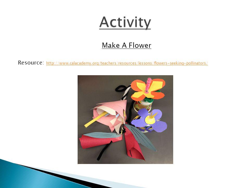 Make A Flower Resource: http://www.calacademy.org/teachers/resources/lessons/flowers-seeking-pollinators/ http://www.calacademy.org/teachers/resources/lessons/flowers-seeking-pollinators/