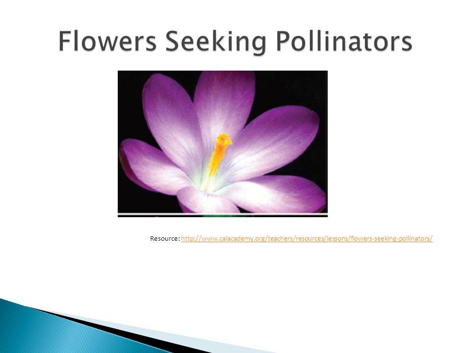 Resource: http://www.calacademy.org/teachers/resources/lessons/flowers-seeking-pollinators/http://www.calacademy.org/teachers/resources/lessons/flowers-seeking-pollinators/