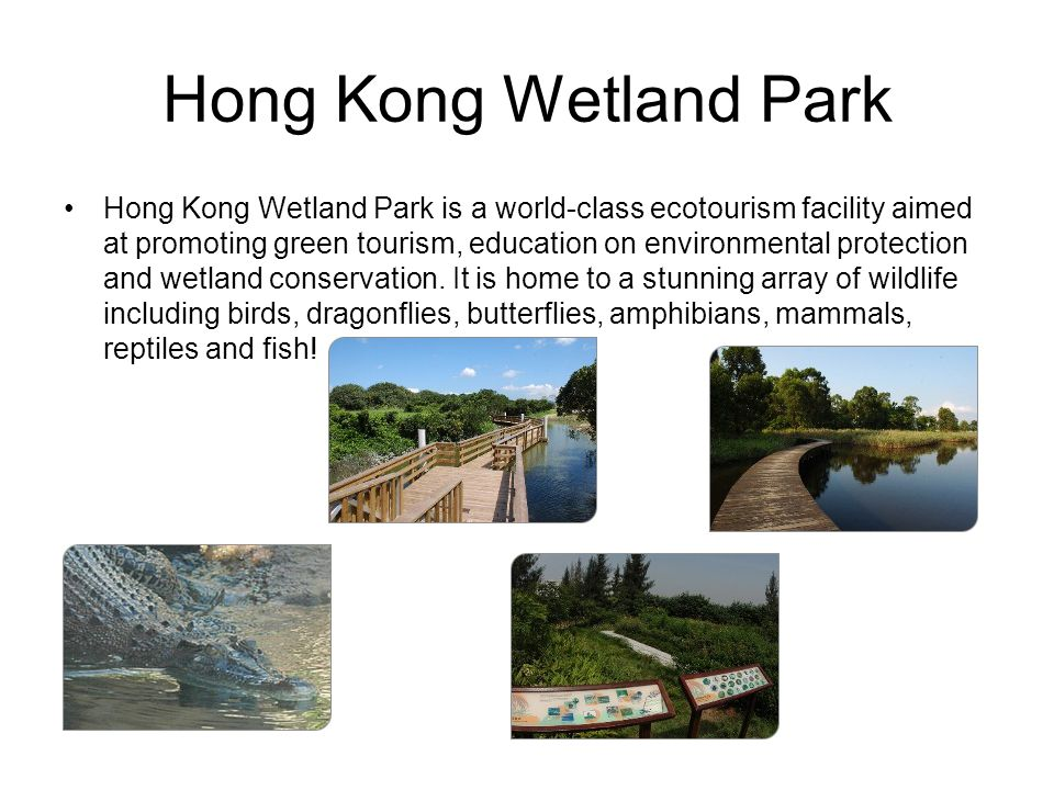 Hong Kong Wetland Park Hong Kong Wetland Park is a world-class ecotourism facility aimed at promoting green tourism, education on environmental protec