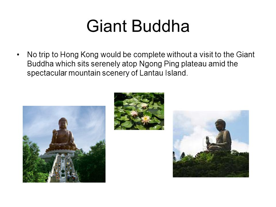 Giant Buddha No trip to Hong Kong would be complete without a visit to the Giant Buddha which sits serenely atop Ngong Ping plateau amid the spectacular mountain scenery of Lantau Island.