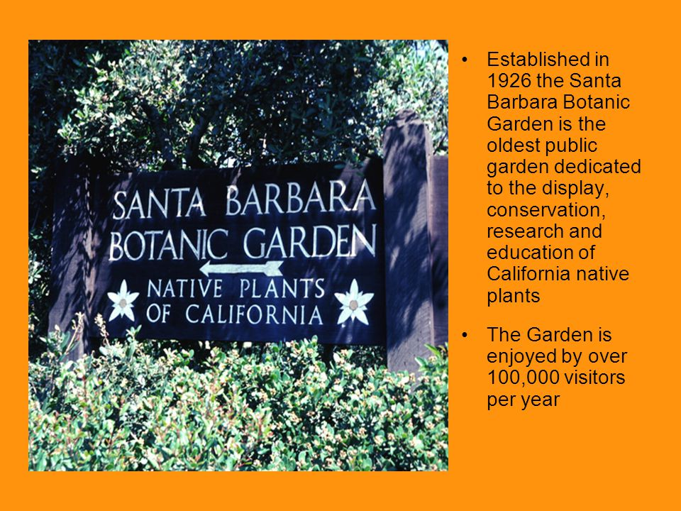 Established in 1926 the Santa Barbara Botanic Garden is the oldest public garden dedicated to the display, conservation, research and education of Cal