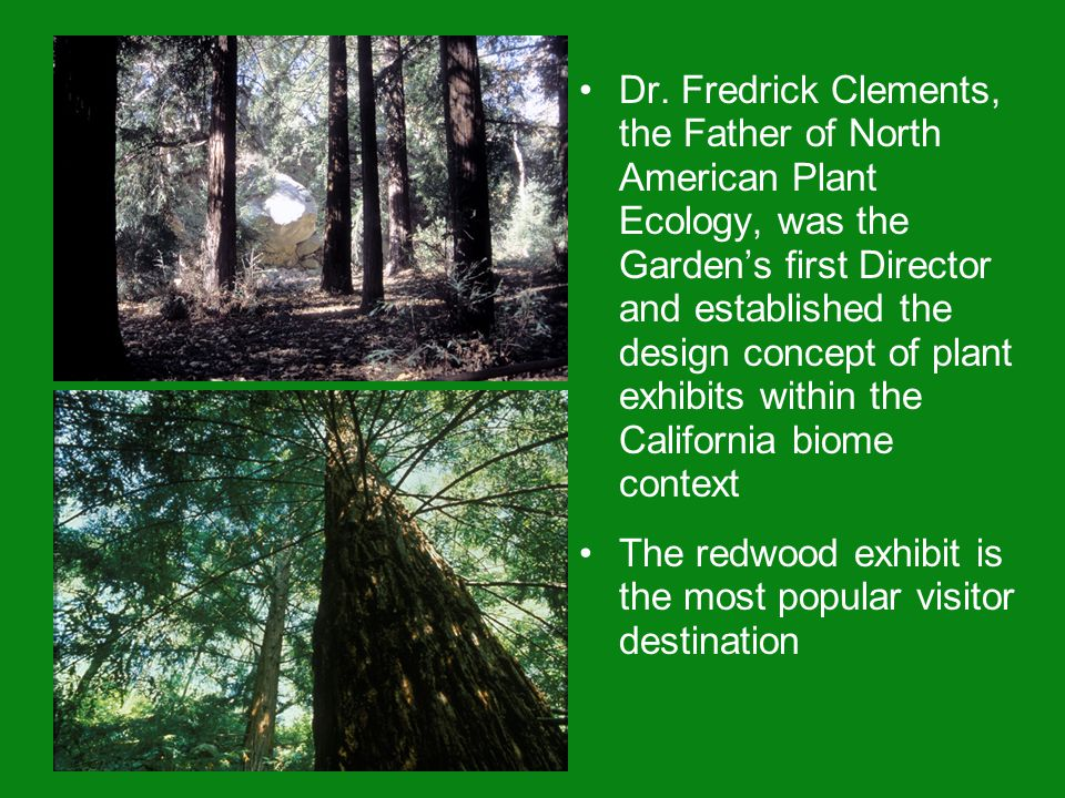 Dr. Fredrick Clements, the Father of North American Plant Ecology, was the Garden's first Director and established the design concept of plant exhibit