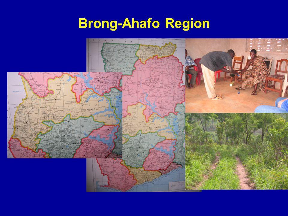 Brong-Ahafo Region