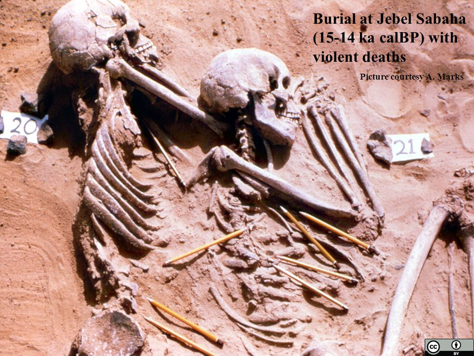 Burial at Jebel Sabaha (15-14 ka calBP) with violent deaths Picture courtesy A. Marks