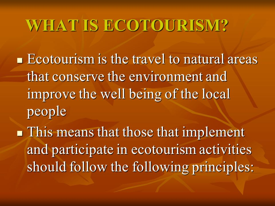 WHAT IS ECOTOURISM.
